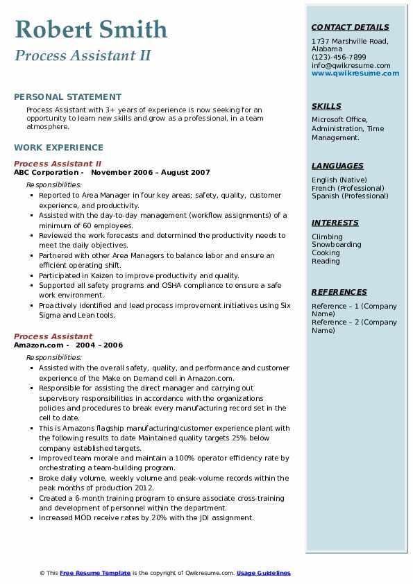 Process Assistant II Resume Sample