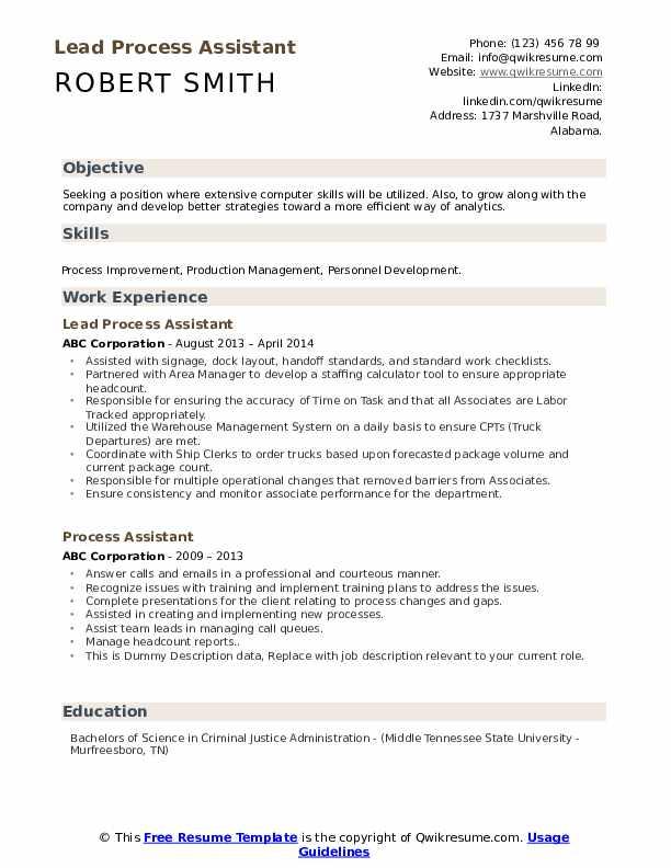 Lead Process Assistant Resume Model