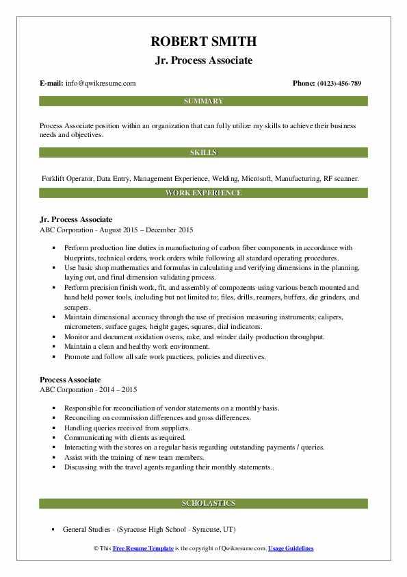 Jr. Process Associate Resume Sample