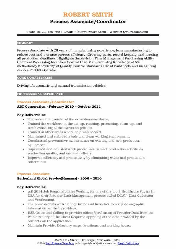Process Associate/Coordinator Resume Example