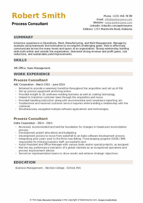 Process Consultant Resume example