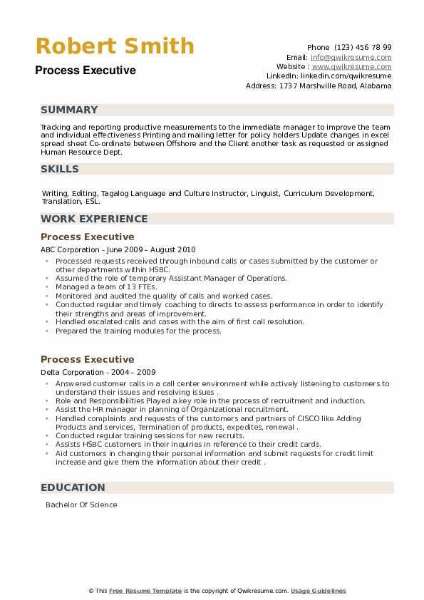 Process Executive Resume example