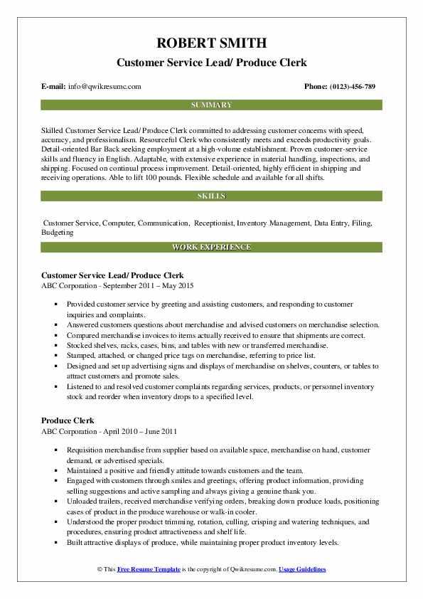 Customer Service Lead/ Produce Clerk Resume Template