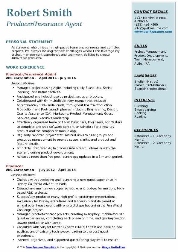 Producer/Insurance Agent Resume Sample