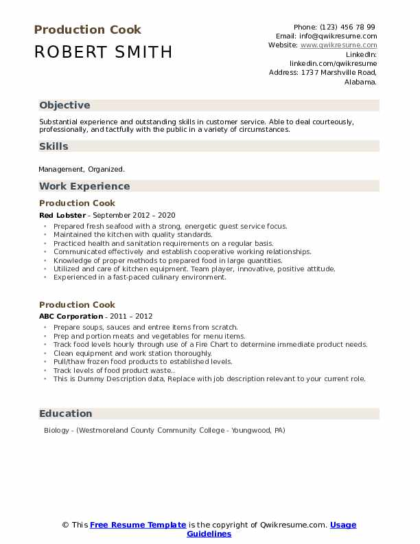 Production Cook Resume example