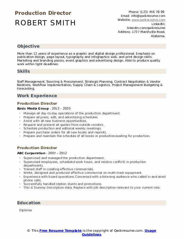 Production Director Resume example