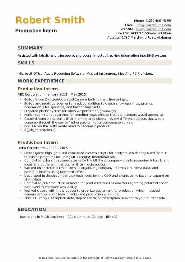 Production Intern Resume example