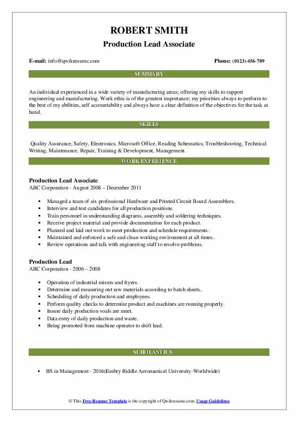 Production Lead Associate Resume Example