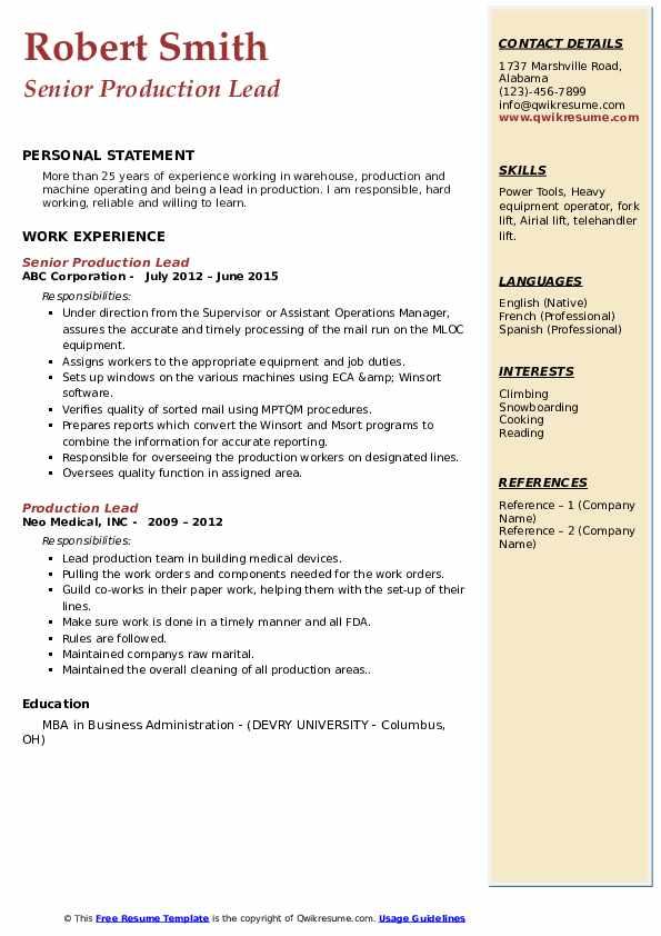Senior Production Lead Resume Example