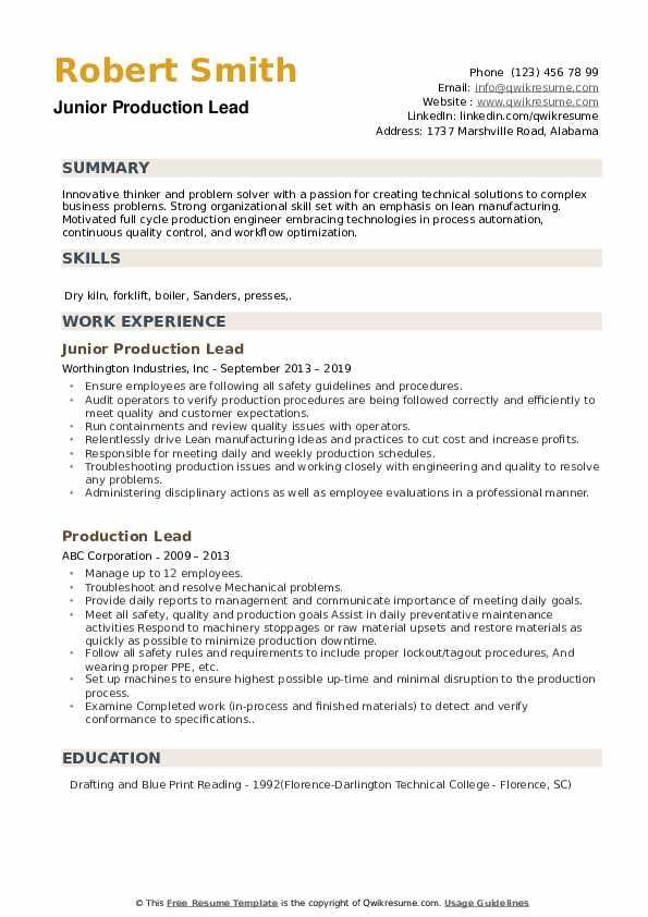 Junior Production Lead Resume Template
