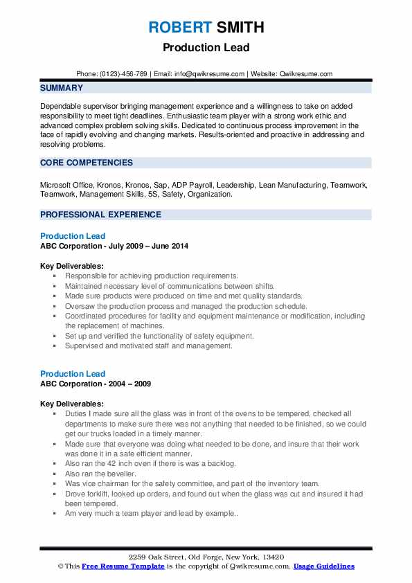 Production Lead Resume example
