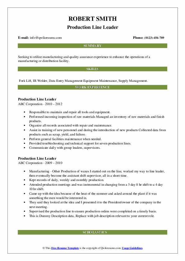 Production Line Leader Resume example
