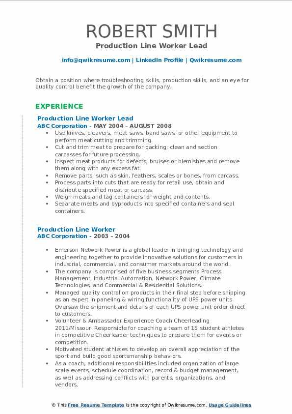 Production Line Worker Lead Resume Model