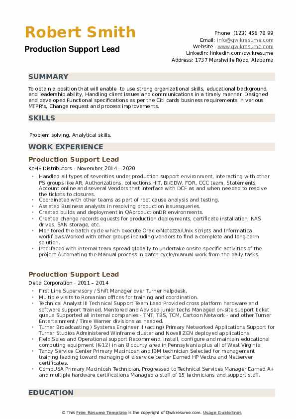Production Support Lead Resume example