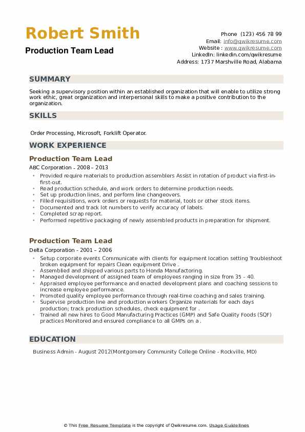 Production Team Lead Resume example