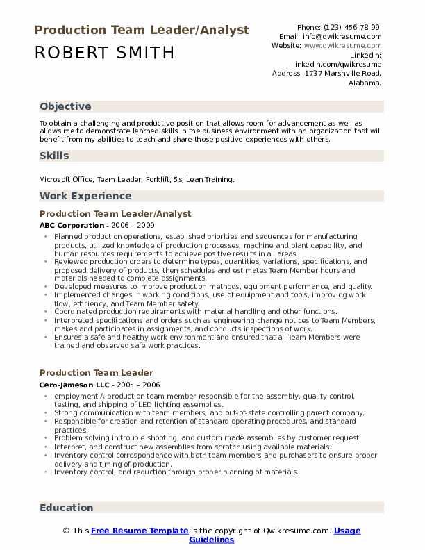 Production Team Leader/Analyst Resume Model