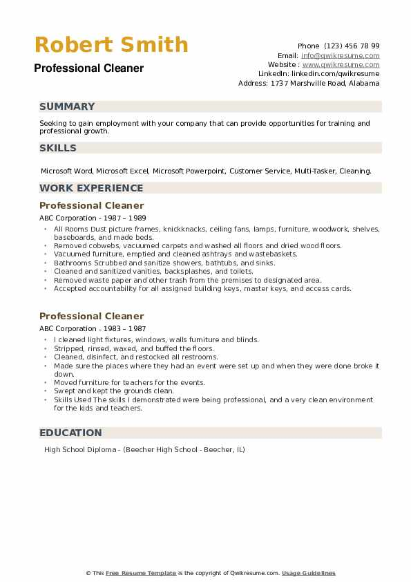 Professional Cleaner Resume example