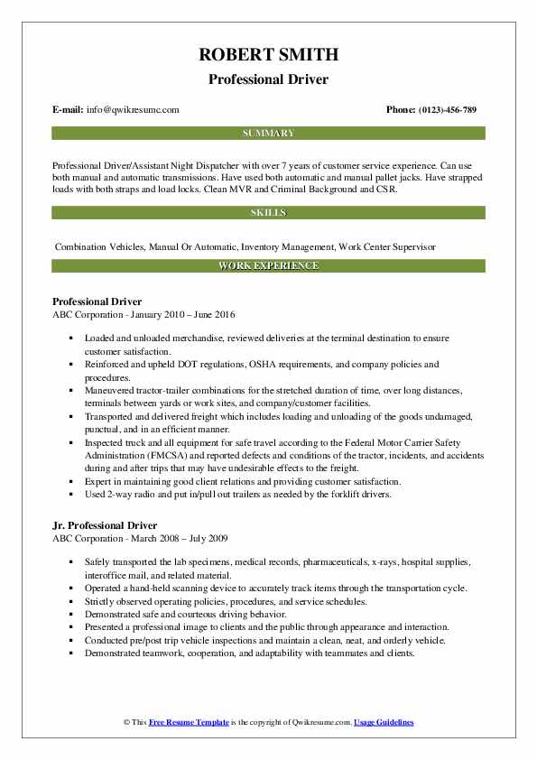 Professional Driver Resume Example
