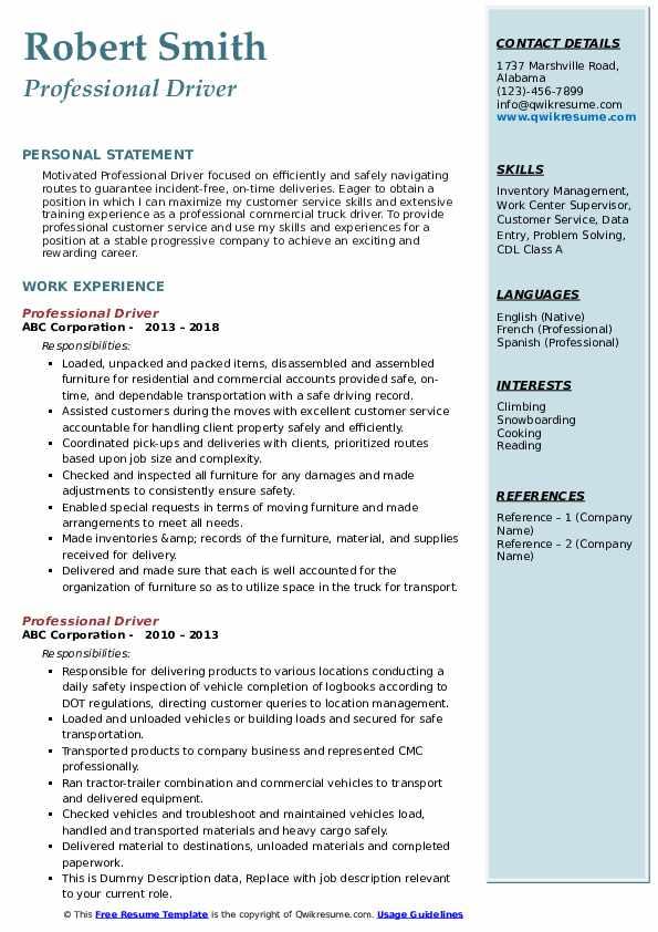 Professional Driver Resume Sample