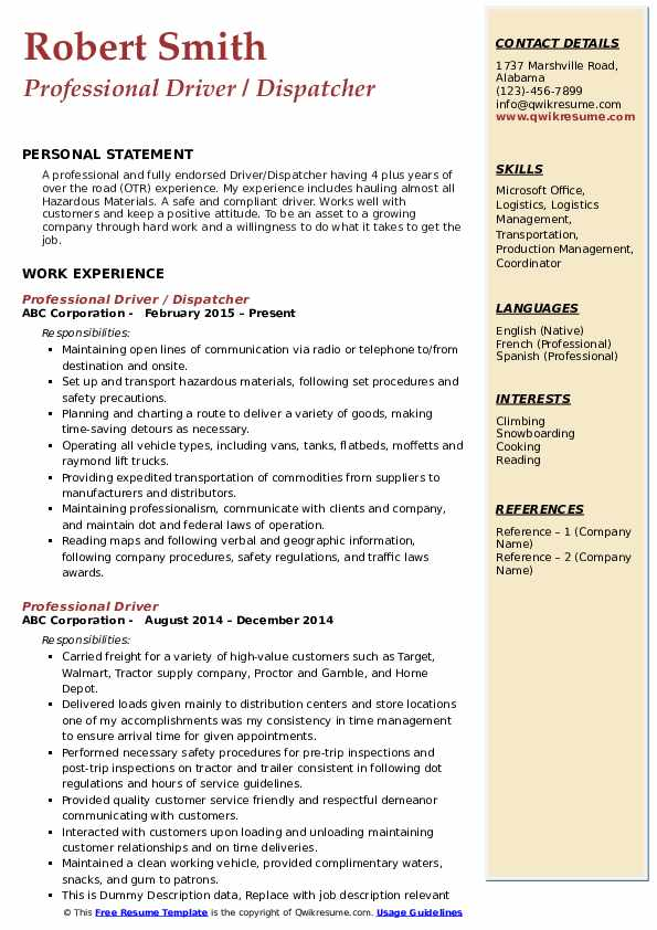 Professional Driver / Dispatcher Resume Template