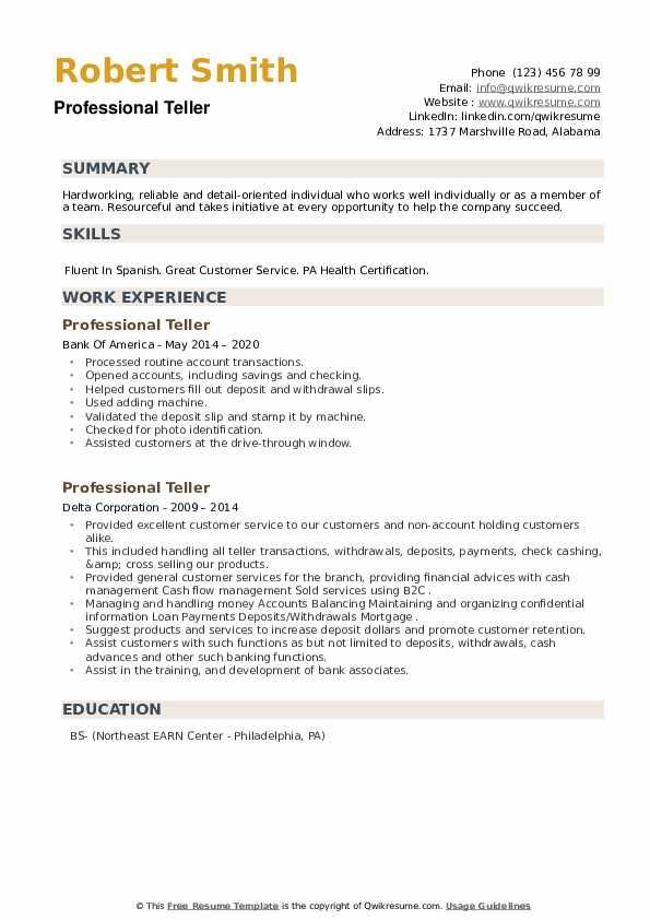 Professional Teller Resume example