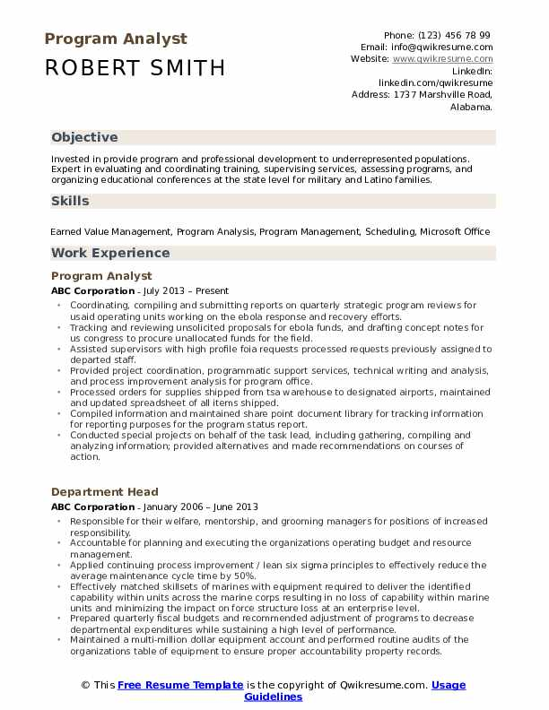 Program Analyst Resume Template