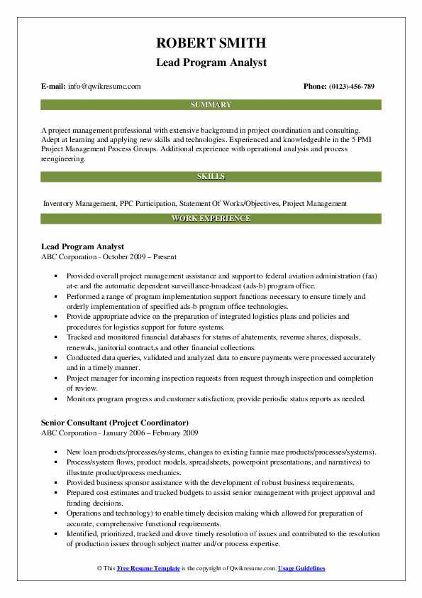 Lead Program Analyst Resume Sample