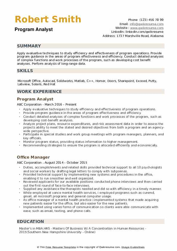 Program Analyst Resume example