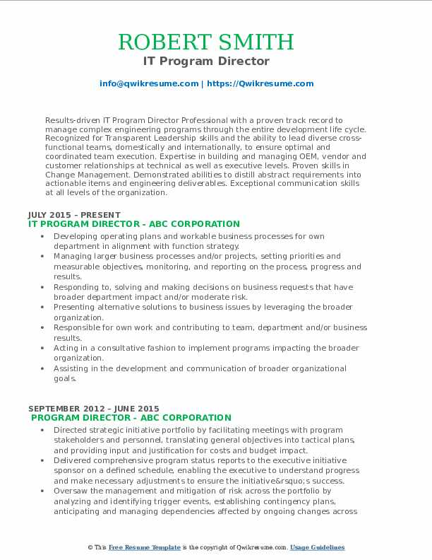 IT Program Director Resume Model