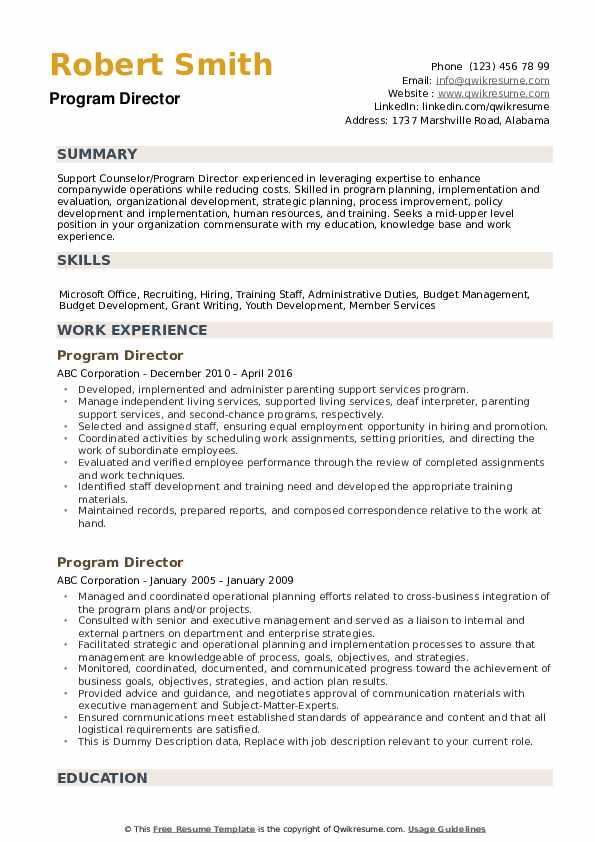 Program Director Resume example
