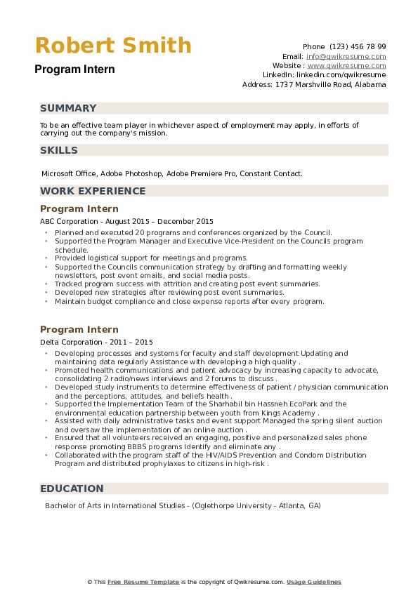 Program Intern Resume example
