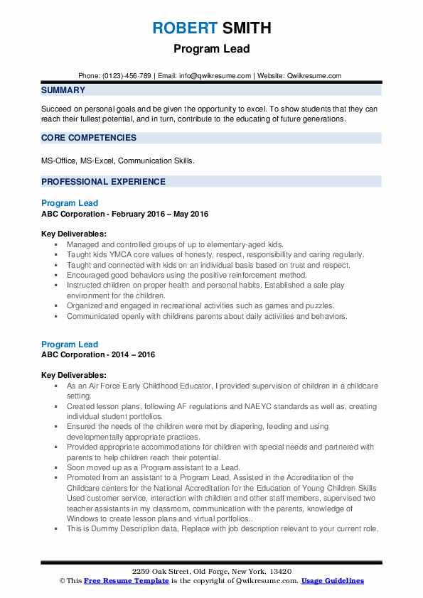 Program Lead Resume example