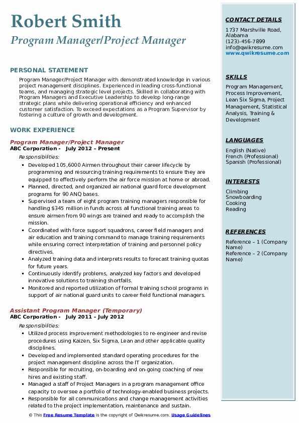 Program Manager/Project Manager Resume Sample