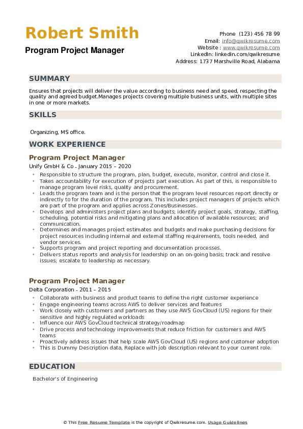 Program Project Manager Resume example