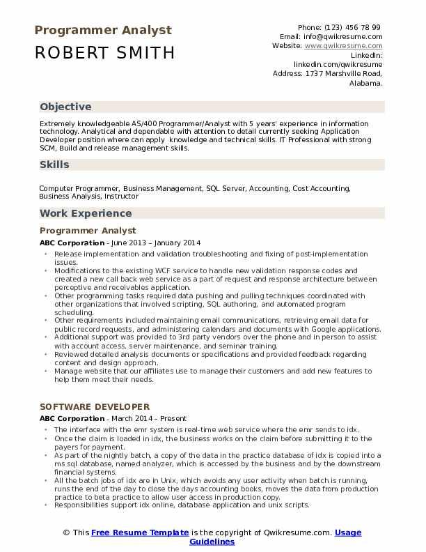 Programmer Analyst Resume Example