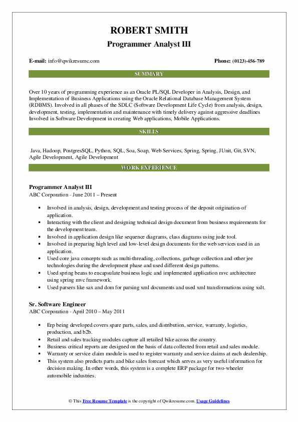 Programmer Analyst III Resume Sample
