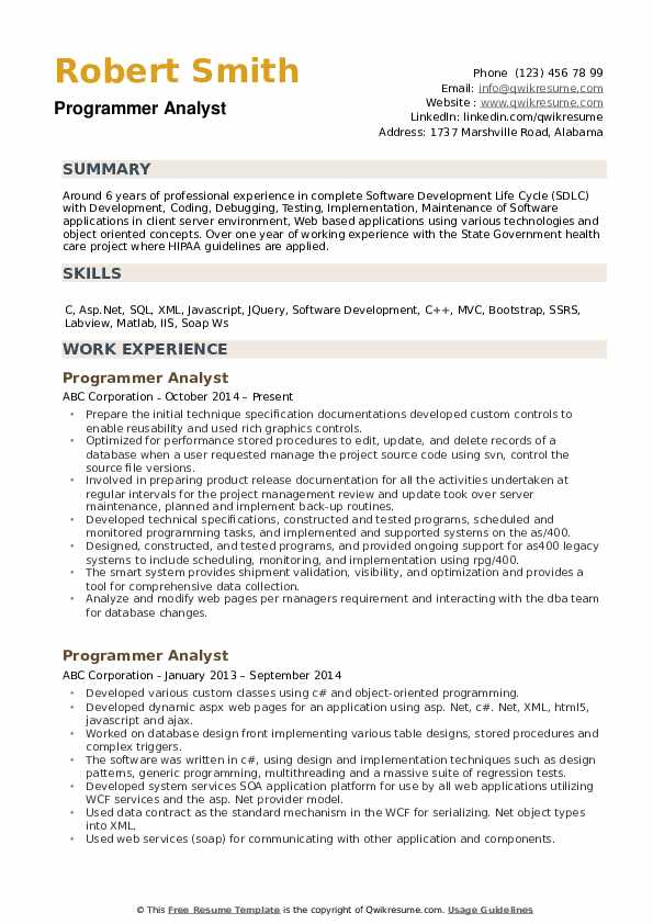 Programmer Analyst Resume example