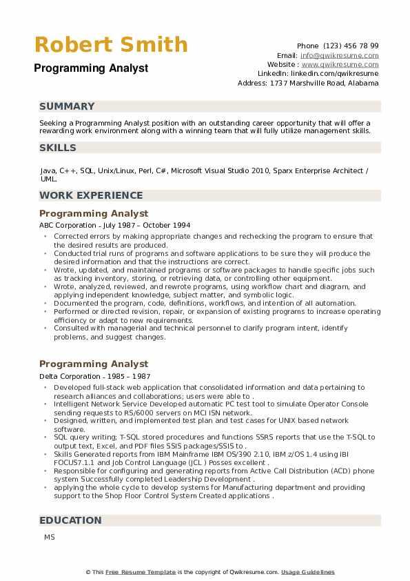 Programming Analyst Resume example