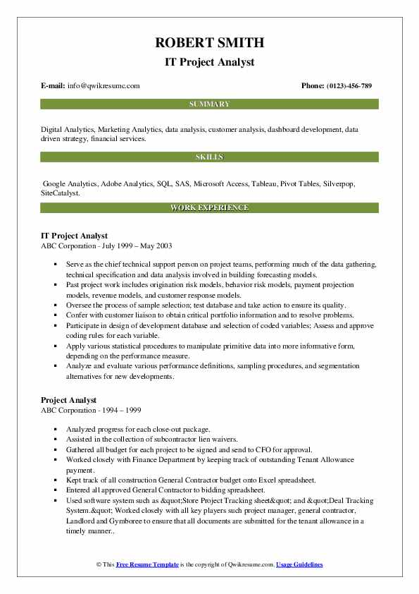 IT Project Analyst Resume Model