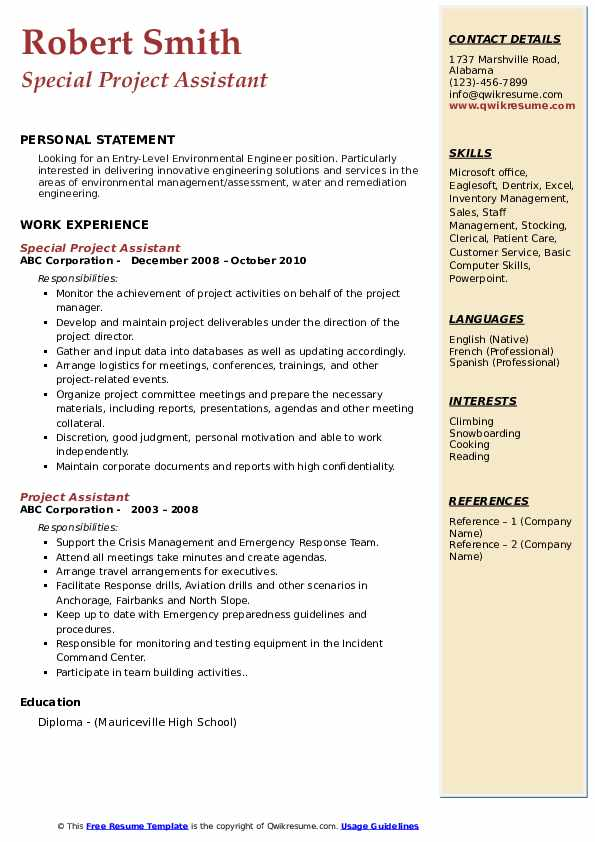 Special Project Assistant Resume Template