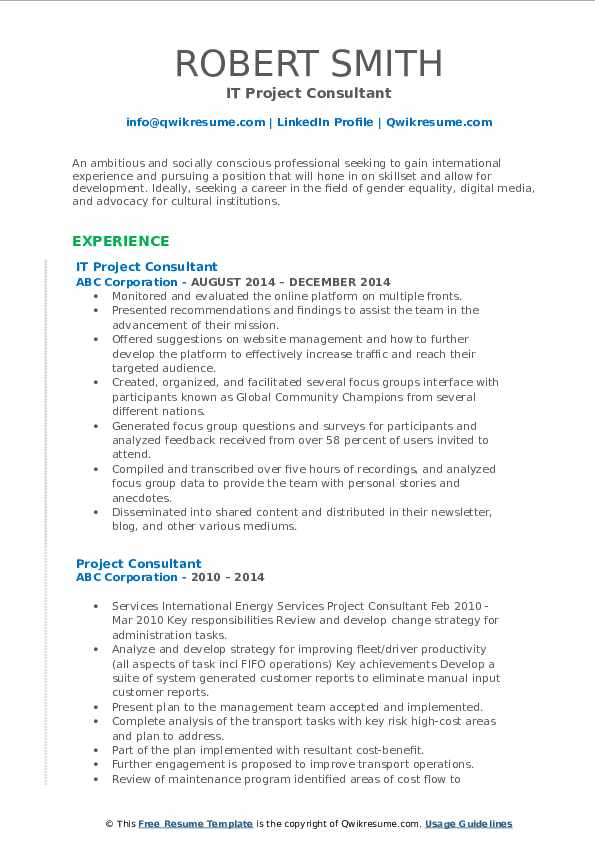 IT Project Consultant Resume Model