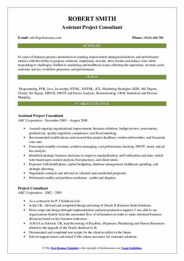 Assistant Project Consultant Resume Model