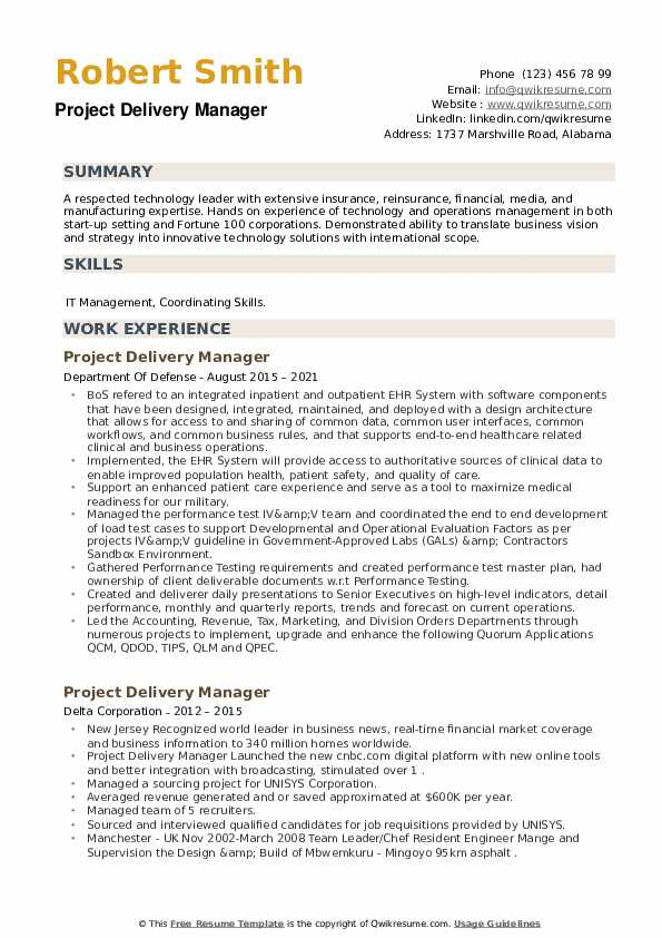 Project Delivery Manager Resume example