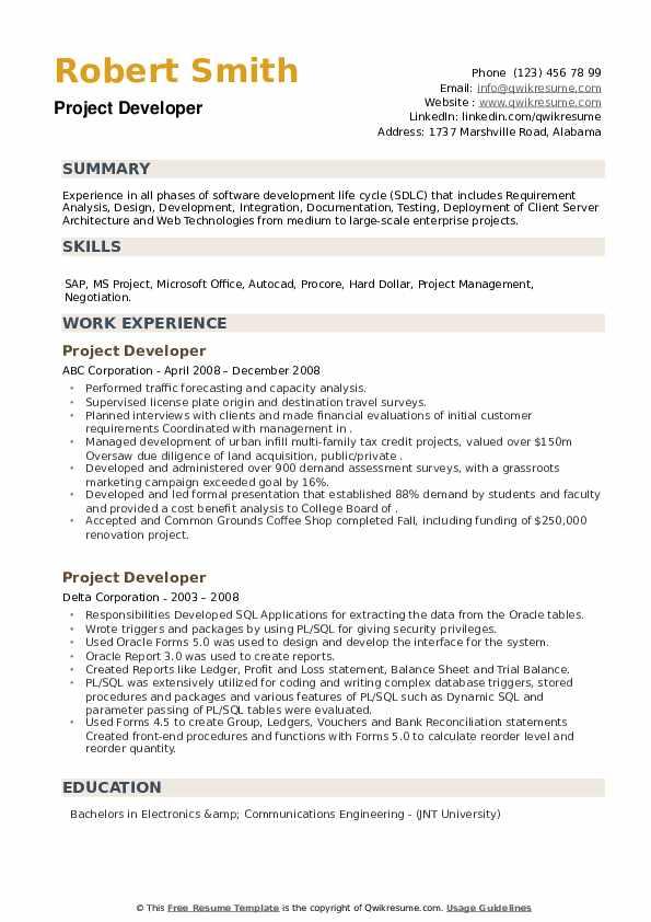 Project Developer Resume example