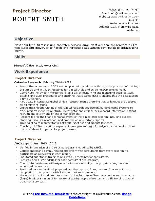 Project Director Resume example