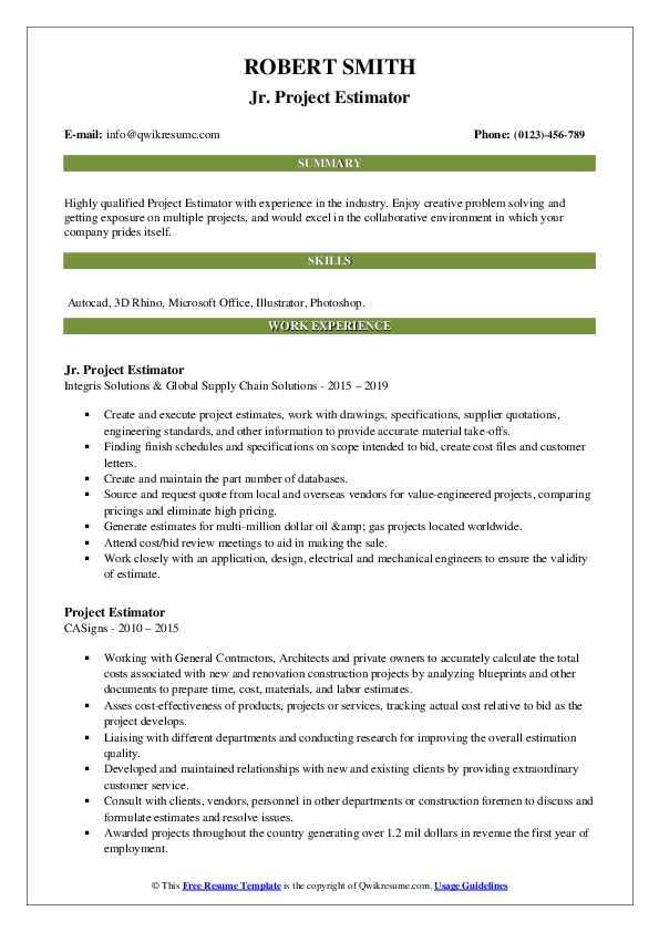 Project Estimator Resume example