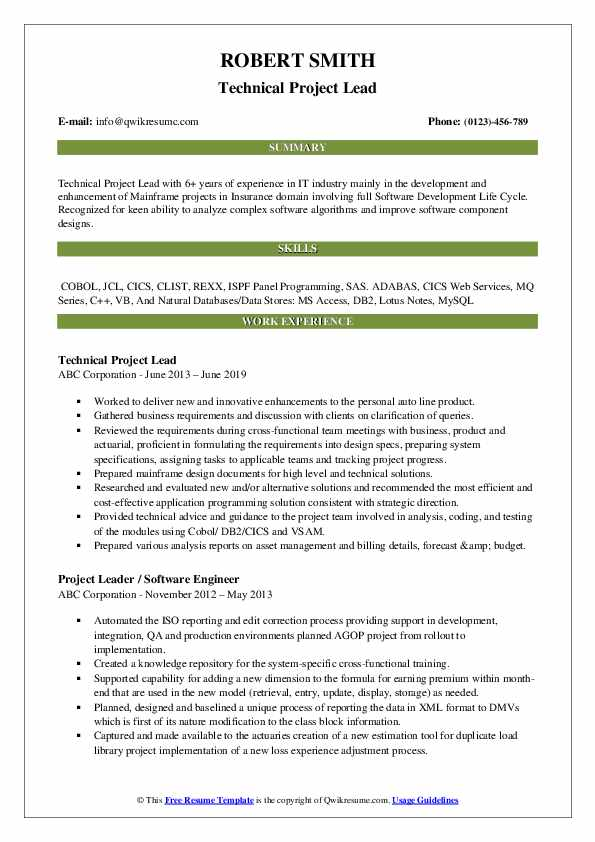 Technical Project Lead Resume Sample