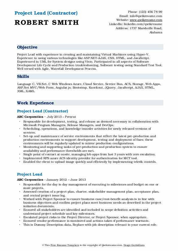 Project Lead (Contractor) Resume Template