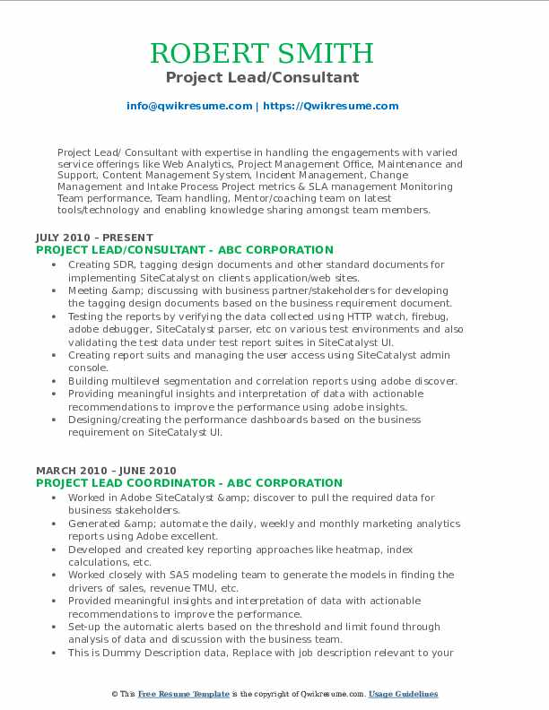 Project Lead/Consultant Resume Model