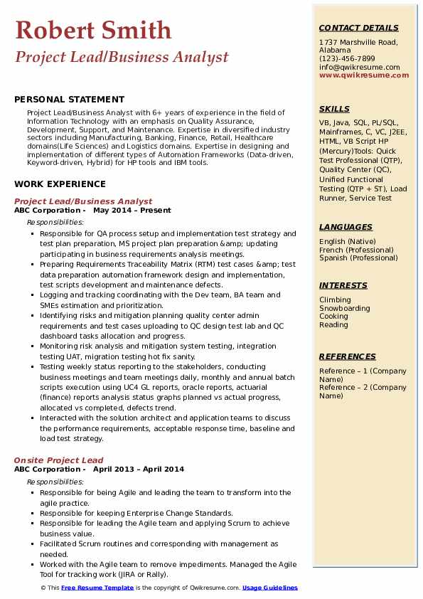 Project Lead/Business Analyst Resume Format